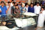 Mamata Banerjee at Rituparno Ghosh's Funeral Procession Pic 1