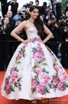 Sonam Kapoor walks the red carpet at 'Cannes Film Festival' 2013 Pic 4