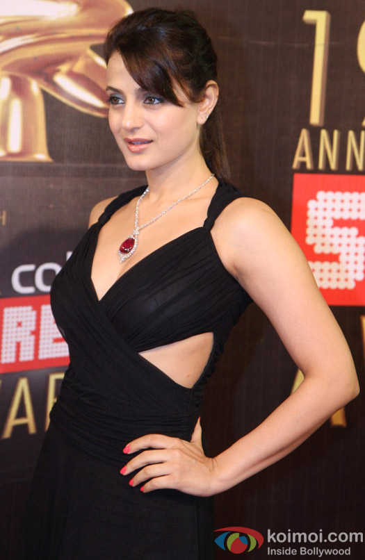 Ameesha Patel at the 19th Annual Colors Screen Awards