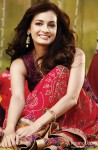 Dia Mirza sizzles in an ethnic avatar