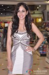 Pooja Chopra Launches Commando DVD