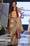 Tara Sharma at Shaina NC's fashion show for CPAA