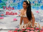 Vidya Balan Wallpaper 1