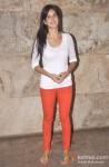 Katrina Kaif Attends 'Ship Of Theseus' Screening