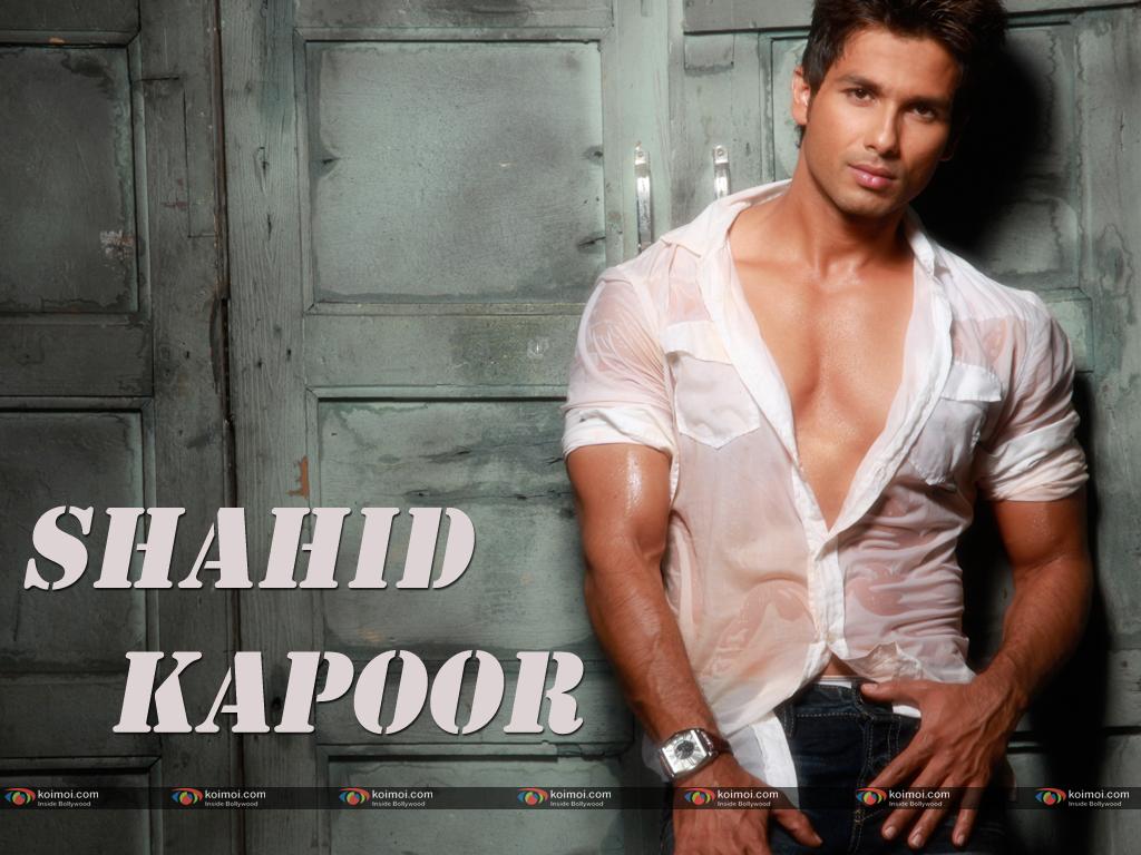 Shahid Kapoor Wallpaper 7