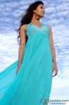 Beautiful Sonal Chauhan Looks On