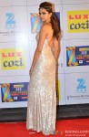 Deepika Padukone Strikes A Pose At Zee Cine Awards 2014