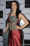 Elli Avram during the India Resortwear Fashion Week (IRFW) 2013