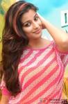 Hot Maddhurima Banerjee looking hot in pink
