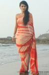 Madhurima Tuli in nice simple sari