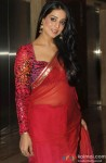 Mahie Gill Sizzles In A Traditional Saree