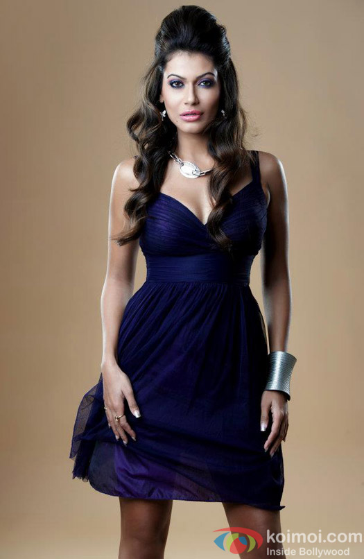 Payal Rohatgi looks stunning in a beautiful navy blue dress