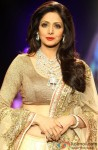 Sridevi Looks Gorgeous In A Embellished Outfit