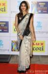 Vaani Kapoor shimmers in a sari