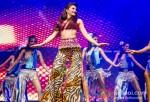 Jacqueline Fernandez Rock's Sydney | Temptations Reloaded 2013 Pic 1