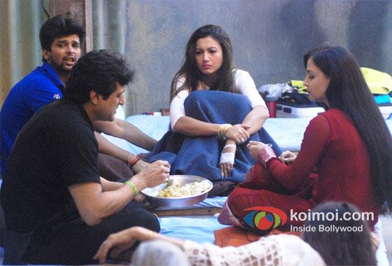Kushal Tandon, Armaan Kohli, Gauhar Khan And Elli Avram in Bigg Boss 7