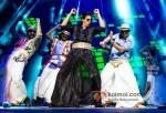 Shah Rukh Khan Rock's Sydney | Temptations Reloaded 2013 Pic 1