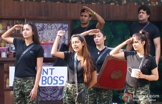 Gauhar Khan, Tanisha Mukherjee, Sofia Hayat, Sangram Singh and Armaan Kohli in Bigg Boss 7