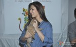 Sonali Bendre Behl at Pet Adoption 2013 Pic 1