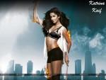 Katrina Kaif Wallpaper 8