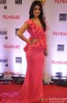Anjana Sukhani walks the Red Carpet of 'Filmfare Awards 2014'