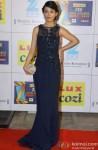 Amrita Rao Attends 'Zee Cine Awards' 2014