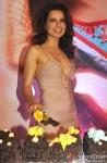 Kangana Ranaut at Queen's success bash Pic 2