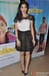 Sophie Choudry at the special screening of Marathi film 'Yellow'