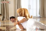 Akshay Kumar in Entertainment Movie Stills Pic 1