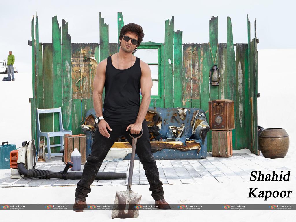 Shahid Kapoor Wallpaper 19