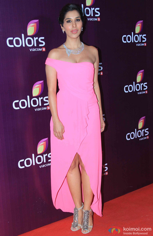 Sophie Choudry during the red carpet of Colors Party 2015