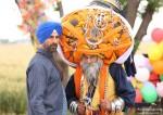 Akshay Kumar in Singh Is Bling Movie Stills Pic 4