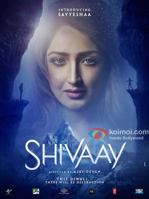 First Look : Sayyeshaa Saigal In Shivaay
