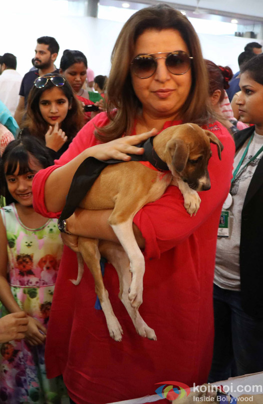 Farah Khan along with children,s during the pups and kitten adoption camp
