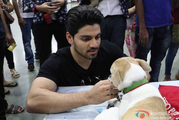 Sooraj pancholi during the pups and kitten adoption camp