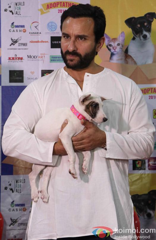 Saif Ali Khan during the pups and kitten adoption camp