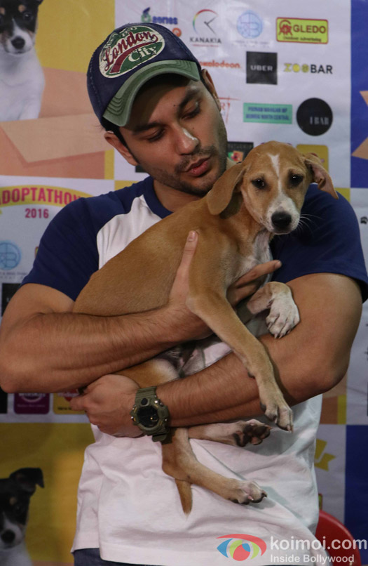 Kunal Khemu during the pups and kitten adoption camp