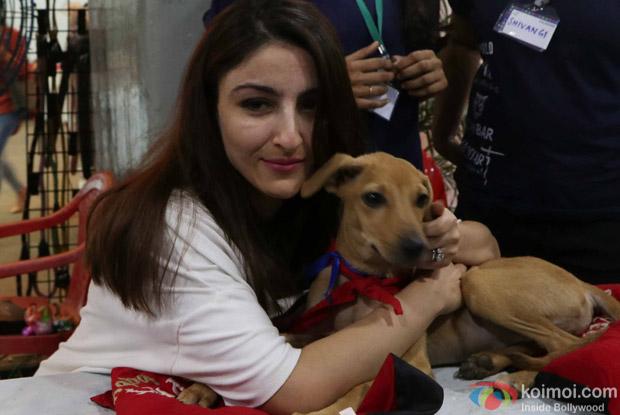 Soha Ali Khan during the pups and kitten adoption camp