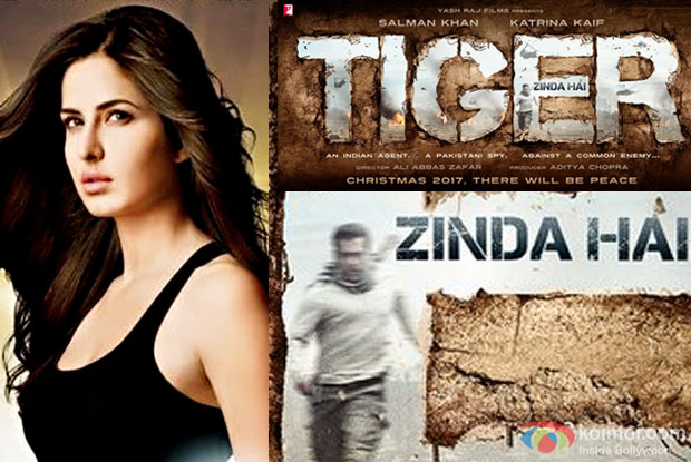Is Katrina Playing A Negative Lead In Salman's Tiger Zinda Hai?