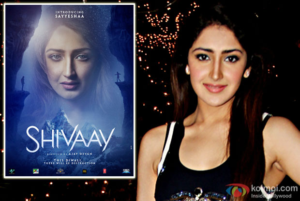'Shivaay' was a learning experience for me: Sayyeshaa Saigal