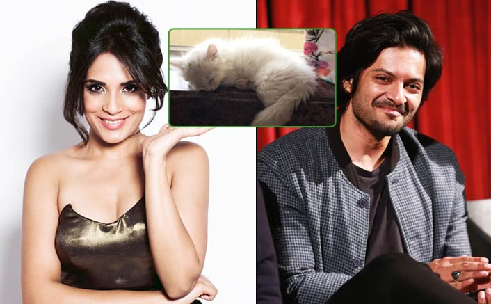 Here's What Ali Fazal Gifter Richa Chadha For Her Birthday