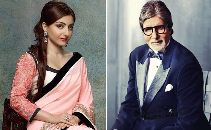 Soha receives letter of encouragement from Big B