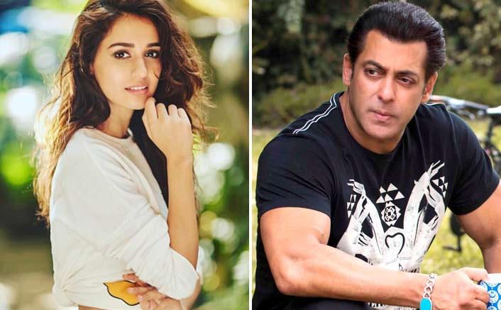 Disha Patani, Salman Khan to sizzle on screen in Bharat