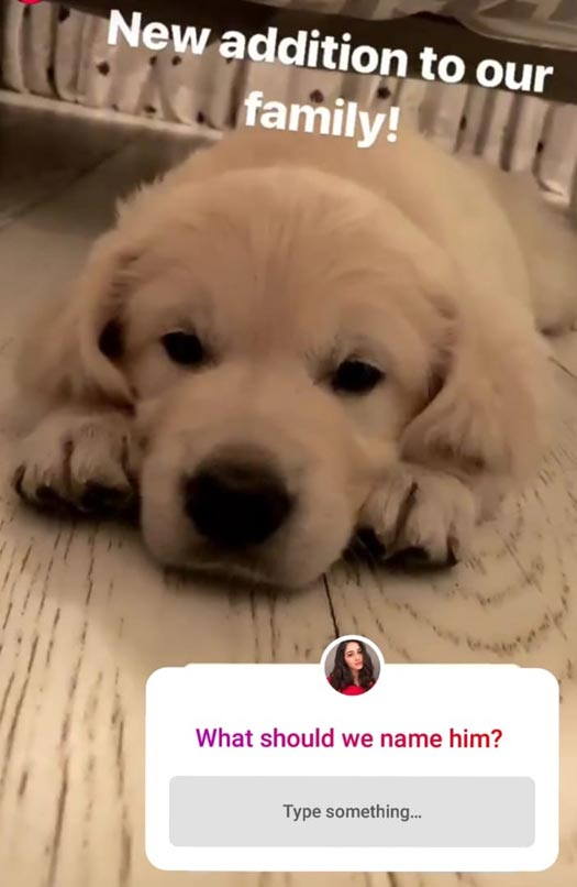 Ananya Pandey's pre-birthday gift from her mom is too cute to handle!