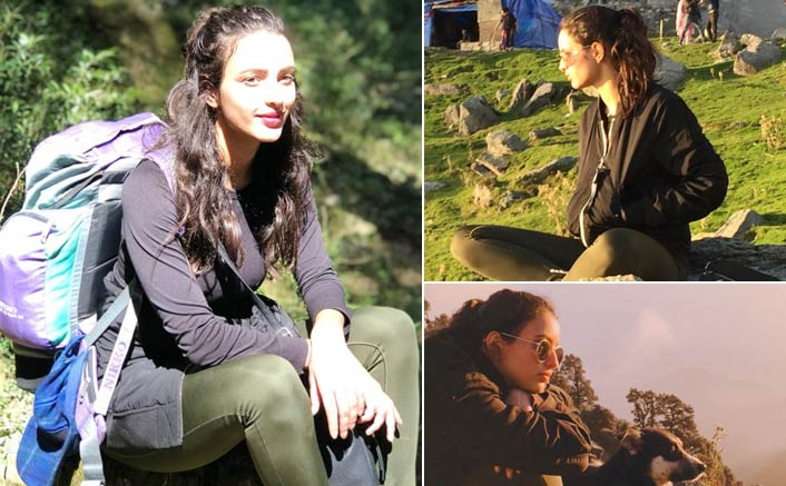 Did You Know? Laila Majnu Actress Tripti Dimri Has A Special Connect With Mountains