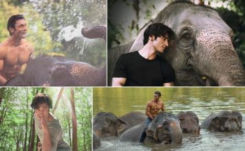 Teaser of Vidyut Jammwal starrer Junglee released today!
