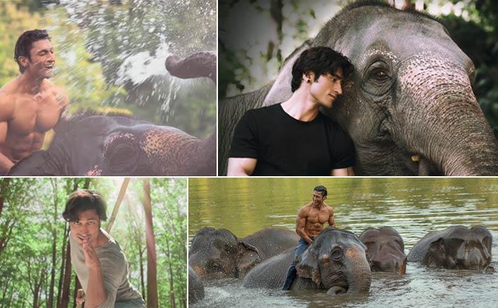 Teaser of Vidyut Jammwal starrer Junglee released today!