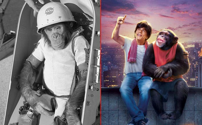 Decording Zero Climax: These Crazy Theories About The Shah Rukh Khan Starrer Are VIRAL On The Internet!