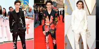 Hey Girls! We present you, the new crush on the internet, Timothee Chalamet.