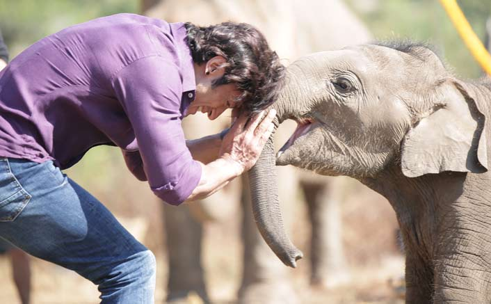 Vidyut Jammwal's special friend- a baby elephant, Moonbeam